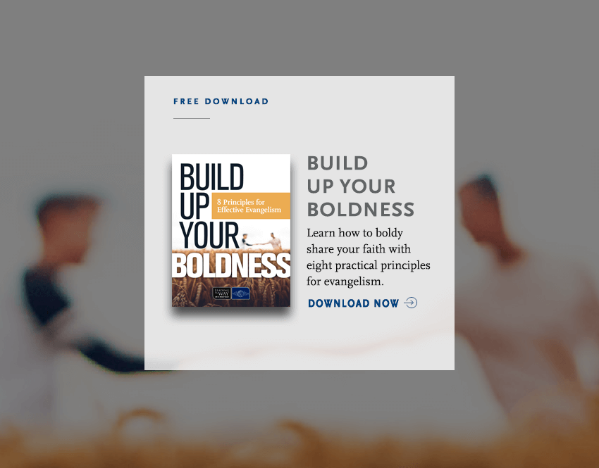 Build Up Your Boldness